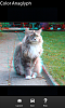 3D Photo Camera - Take 3D Photo Just With Your BlackBerry-cat.png